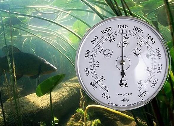 Какое давление для рыбалки лучше всего